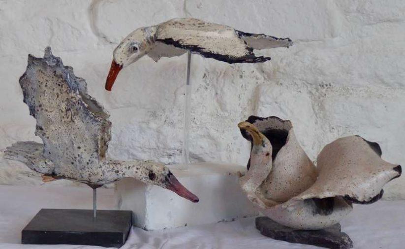 Diana Dixon Birds