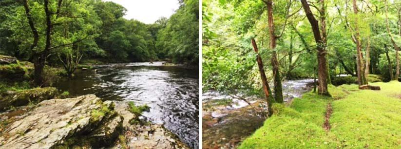 Doublewaters Tavistock