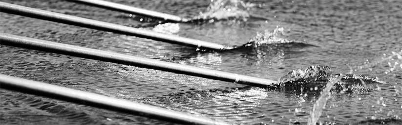 Rowing In Devon